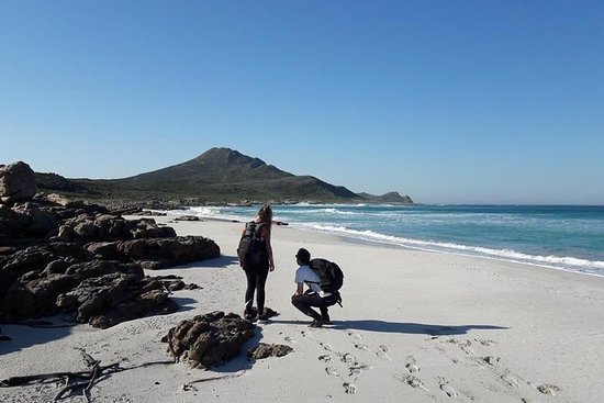 Fottur Cape of Good hope & Cape Point...