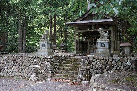紀州体験!高野山ツアーと紀州半島で一泊
