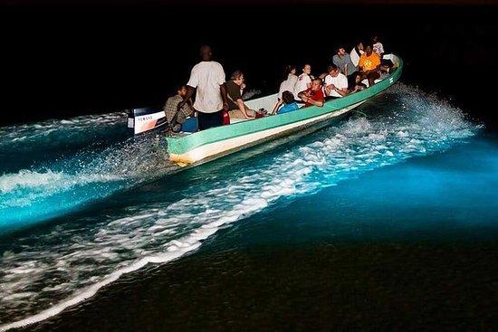 Tour du lagon bioluminescenct d'un...