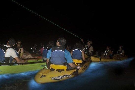Aventure d'un kayak bioluminescent...