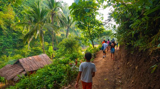 Jungle Trekking Chiang Mai
