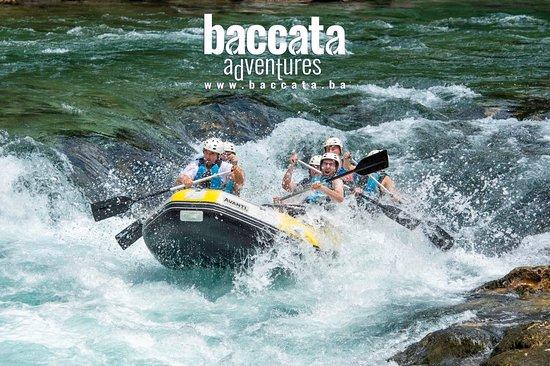 Baccata Adventures