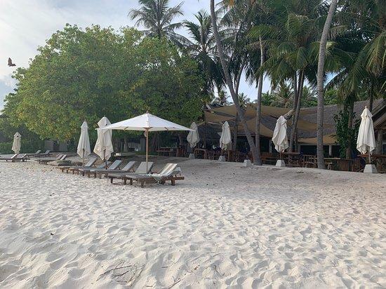 Amilla Maldives Resort and Residences: öffentlicher Beach man beachte ungleiche Möblierung