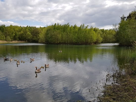 Walton Colliery Nature Park
