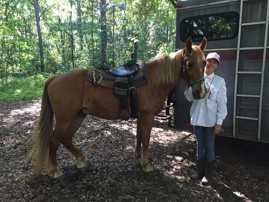 Rebel Ranch Horse Tours