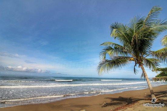 Beach Yoga & Massage Panama