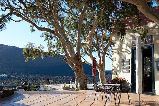 La Geria, Ισπανία: Nachmittags ist die Terrasse ein wunderbarer Platz, um über die Weinberge zu blicken.