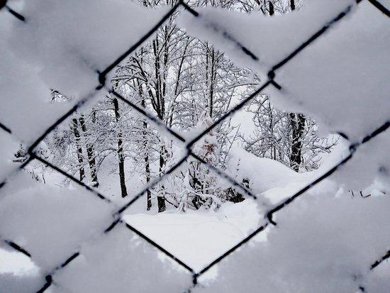 Daiano, อิตาลี: Oggi nevica.. Nella Magnifica Valle di Fiemme