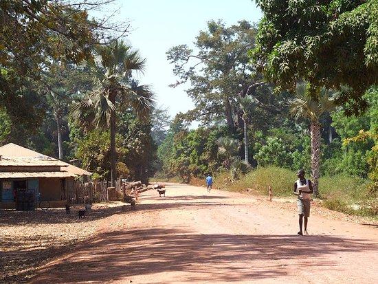 Saint-Philbert-de-Grand-Lieu, ฝรั่งเศส: Foret de la Casamance