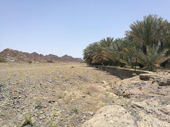 Mahdah, Оман: Looking up the Wadi Sharm