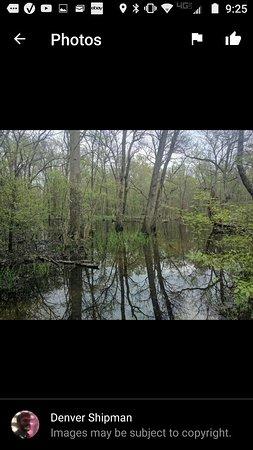 Hawkins, เท็กซัส: Best kept Angler Bass fishing in Texas
