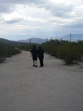 2009 Saguaro NP