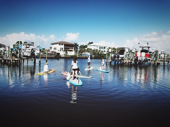 SeaLyon Paddle Adventures