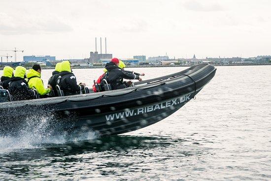 RibAlex.dk