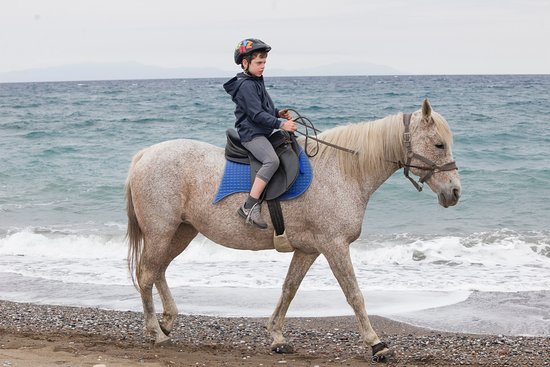 Euboea Region, Yunanistan: Kids can ride our horses from the age of three!  www.rancheros.gr