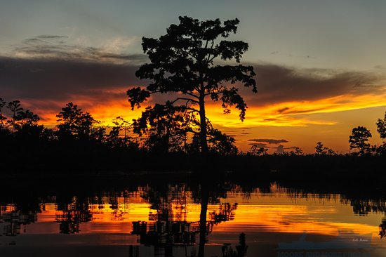 Moore To See Photo Expeditions: River Sunrise