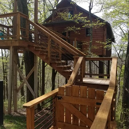 Such a cute treehouse!!