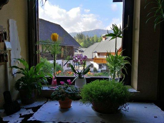 Antonija's beautiful home
