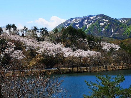 Yashio Ikoinomori
