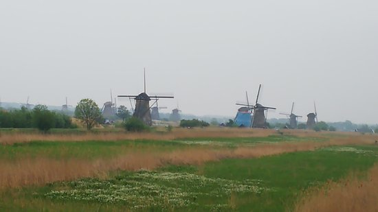 Travel Kinderdijk