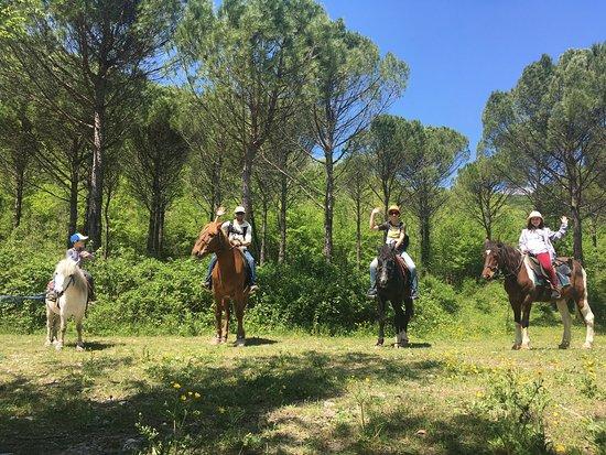 Praskoveyevka, Russia: Прекрасные ухоженные лошадки и добродушный персонал. Катание как для малышей, так и долгие прогулки для взрослых. Мы катались 2 часа в кедровую рощу и к роднику, совсем не устали!
