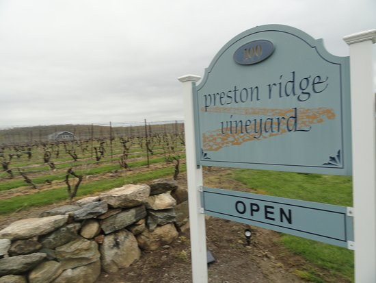 Preston Ridge Vineyard