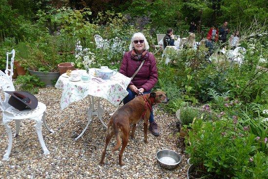 Having tea at the Beanstalk tea garden amongst the flowers with our dog Bonny.
