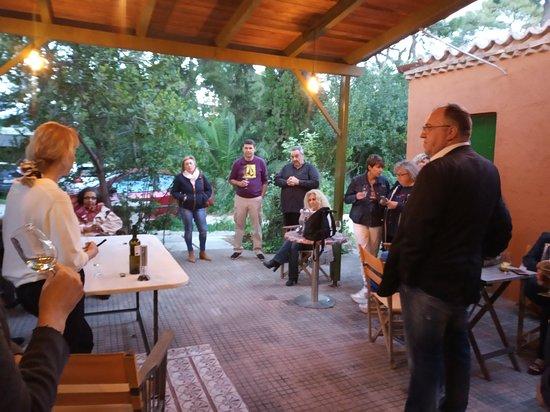 Pallini, Grecia: Η πίσω αυλή μέσα στο πράσινο για στιγμές χαλάρωσης!!!