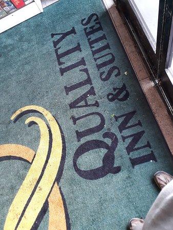 Montebello, CA: dirty carpet