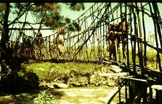 Papua Wonderland