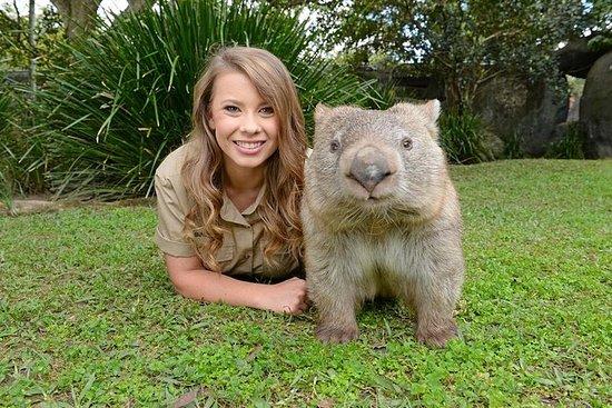 Zoológico da Austrália em Ônibus Croc...