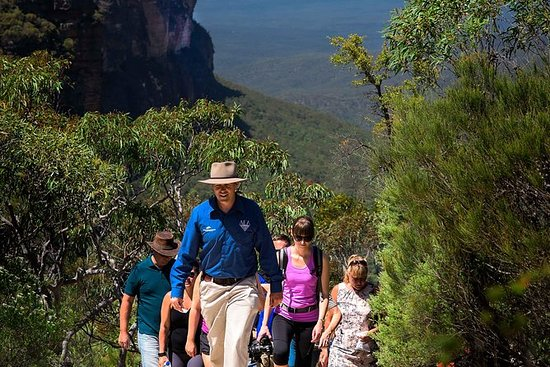 Blue Mountains Wildlife Day Sights e...