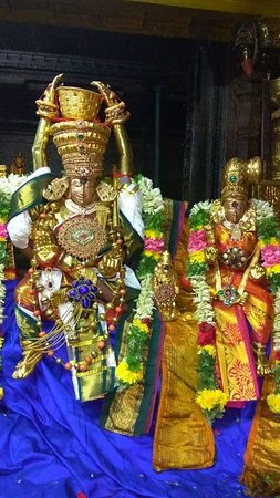 """Madurai District, อินเดีย: Meenakshi Amman Temple is dedicated to Parvati, known as Meenakshi. The temple attracts 15,000 visitors a day, around 25,000 on Fridays. There are an estimated 33,000 sculptures in the temple. It was on the list of top 30 nominees for the """"New Seven Wonders of the World"""". The annual 10-day Meenakshi Tirukalyanam festival, celebrated during April and May, attracts 1 million visitors."""