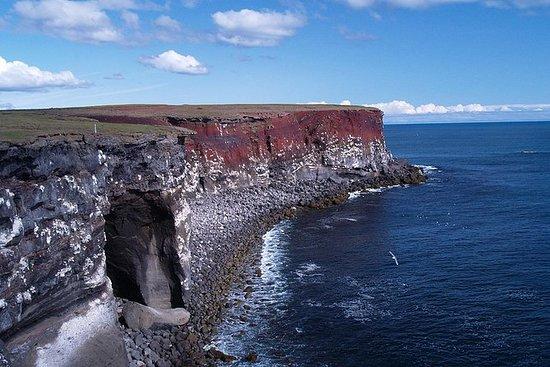 Reykjanes Peninsula Day Trip af Super...