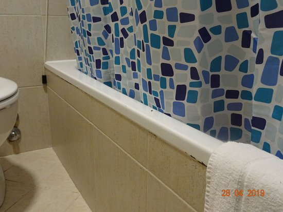 Fourmis dans la salle de bains - Picture of Quality Hotel ...