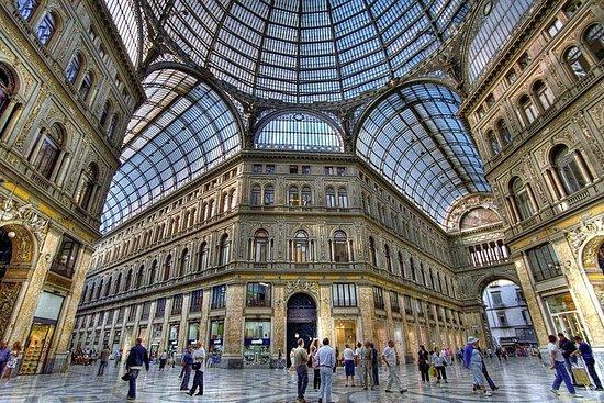 Privat daglig rundvisning i Napoli og...