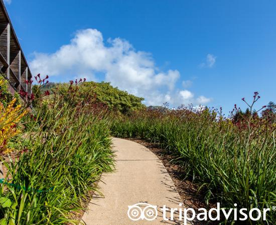 Grounds at the Ventana Big Sur, an Alila Resort