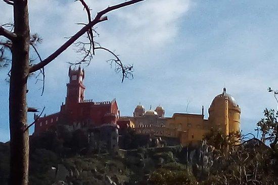 Visite privée de fourgonnettes à Sintra