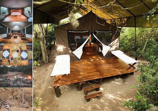 Wild Trails Yala Safari Camp By Yoho 115 ̶1̶3̶3̶