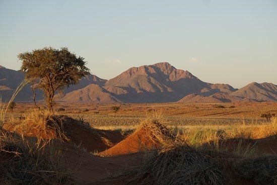 Заповедник Намби-Ранд, Намибия: Tok Tokkie Hiking Trails