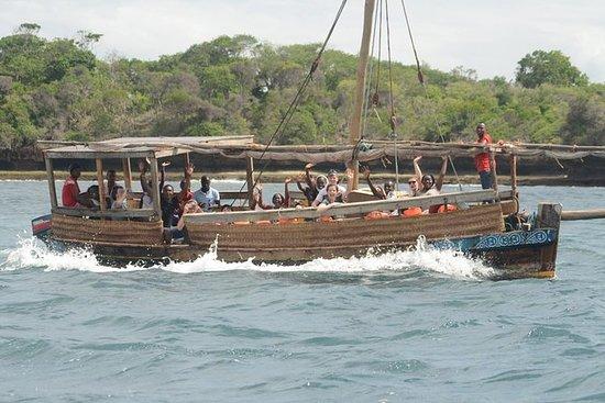 Kisite Marine ParkとWasini Islandのツアー、ラ…