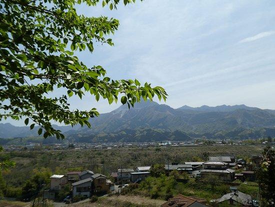 Mt. Kochi Hosenji Fudasho No. 24
