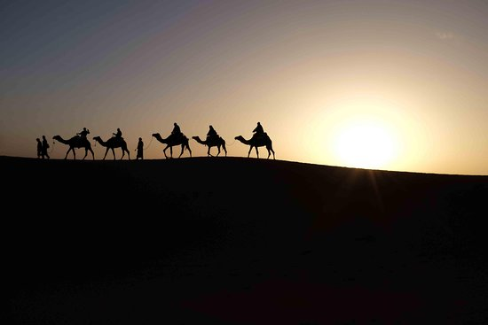 Magic Desert Tours