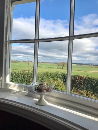 Therapeutic & Relaxing views in James Herriot country!