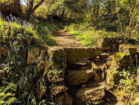 St Newlyn East and Lappa Valley Circular Walk