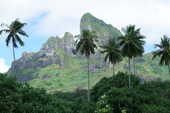 Mount Otemanu: View 1