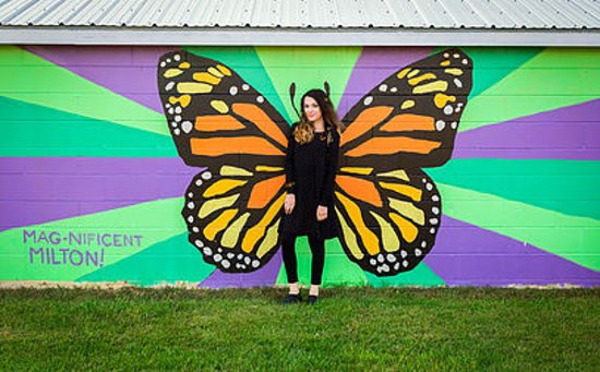 The Milton Artists' Guild: Visit the beautiful Murals in Bombardier Park! MAG with the help of a community promise grant had Jon Young design these murals and on 6/23/18 the community gathered to paint them in! Come #BetheMAGnificentMonarch !