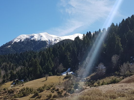 Nivica, Albanie : Luadh nivice albania