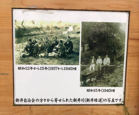 Kakogawa, Japonia: 新井緑道