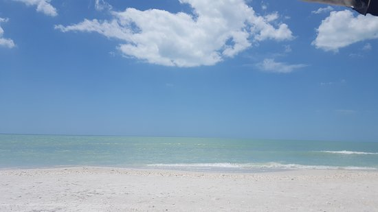 Beautiful beaches on gulf coast and the water is 79 and warm already!! Fort Myers, Bonita Springs.